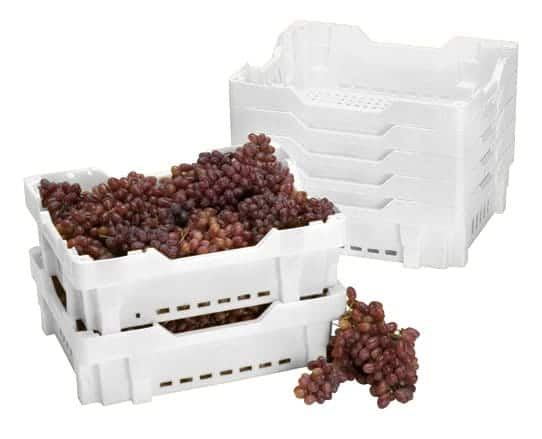 Grape Crate agricultural plastic crates are great picking crates for produce