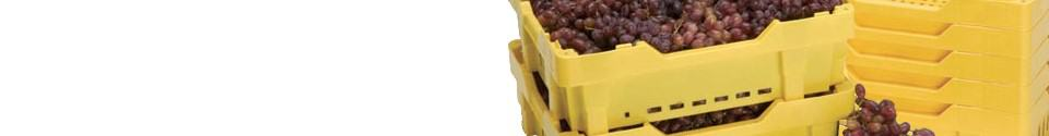 Handheld Plastic Crates by TranPak